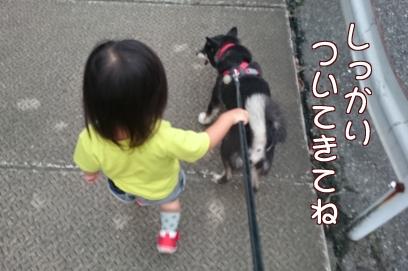一緒に歩こうよ