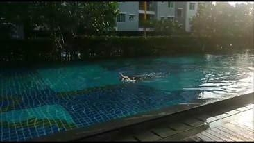 土曜日 朝のプール (2)
