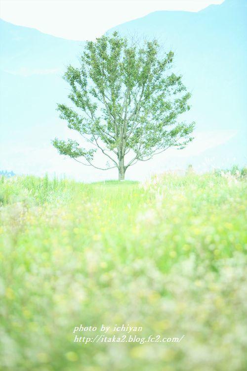 IMG_8281.jpg