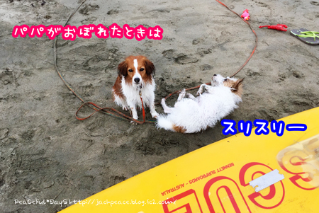 170709_umi2.jpg
