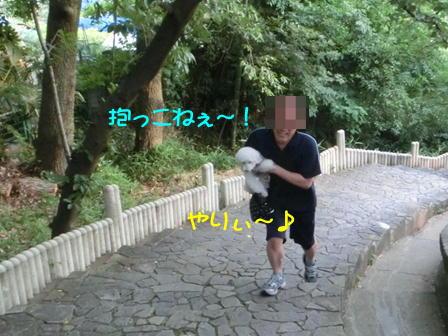 d122.jpg