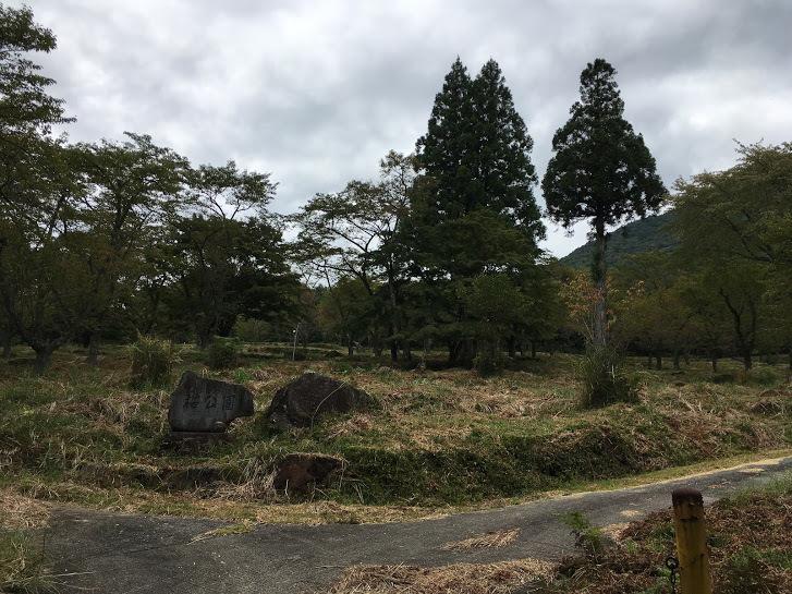 2017篠ヶ峰/町立丹治桜公園
