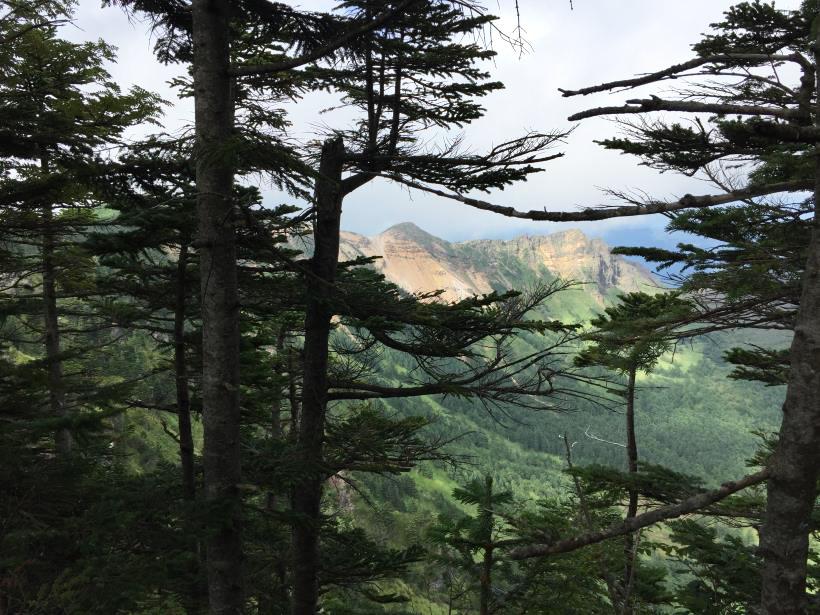 浅間外輪山449