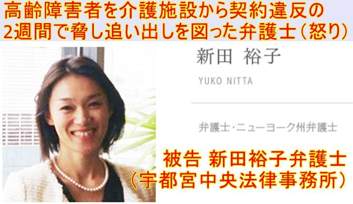 新田裕子弁護士 澤田雄二弁護士、宇都宮中央法律事務所 被告弁護士1