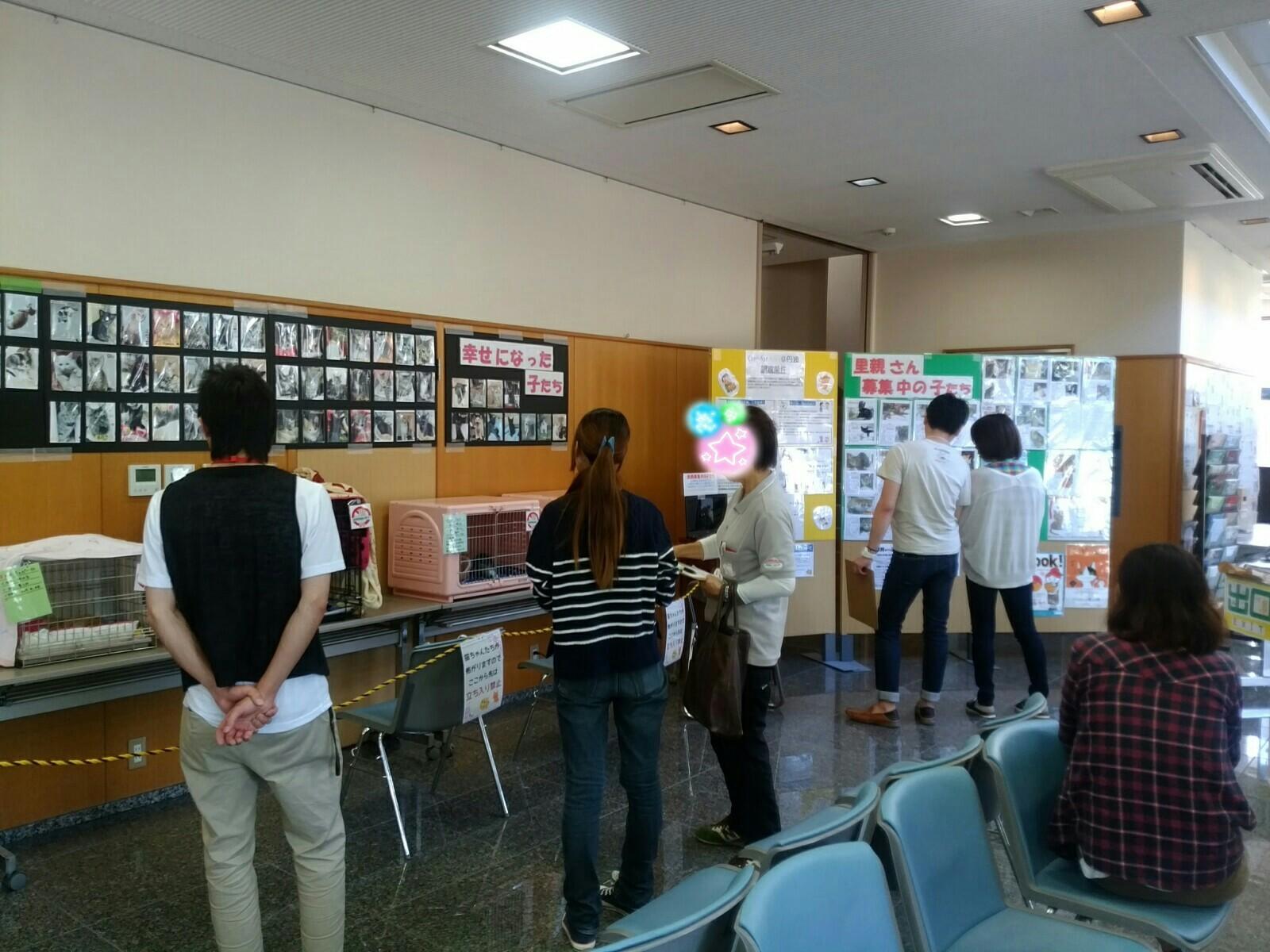 譲渡会 2017・9・18_5