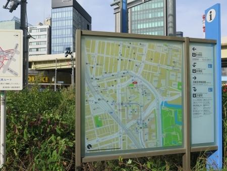 東京のヨウシュヤマゴボウ