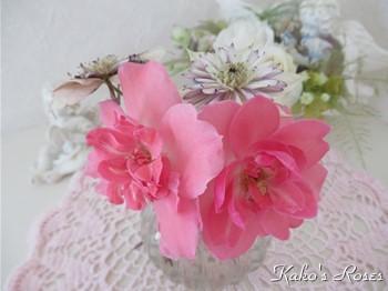 s-IMG_0220k30.jpg
