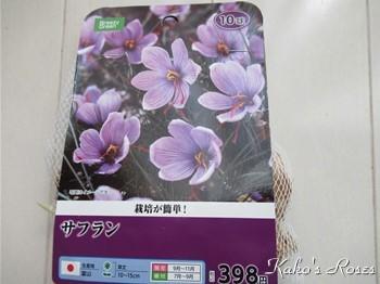 s-IMG_0843k30.jpg