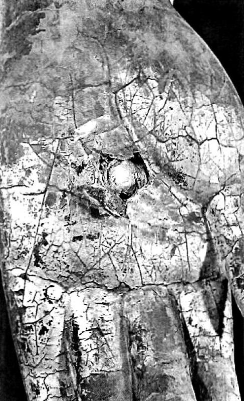 薬師如来像の左手の掌から銅銭が発見された状況