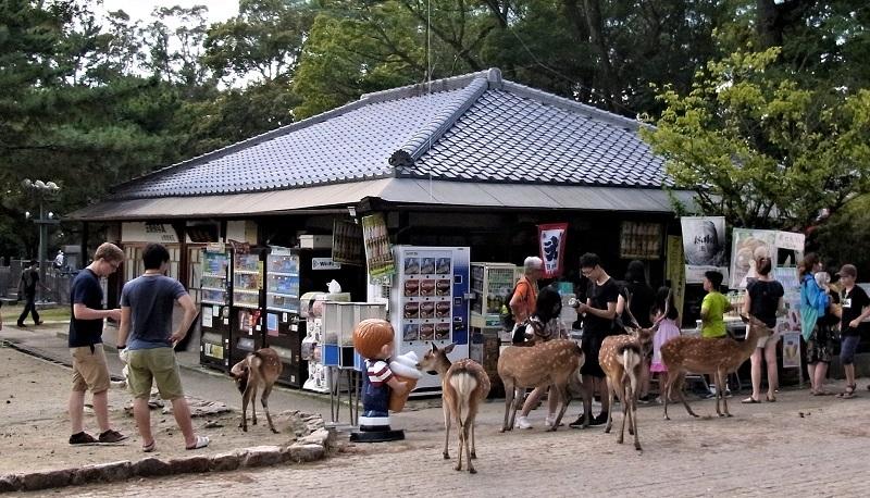 現在の「鹿鳴荘」~飲み物・土産物を求める観光客で賑わう