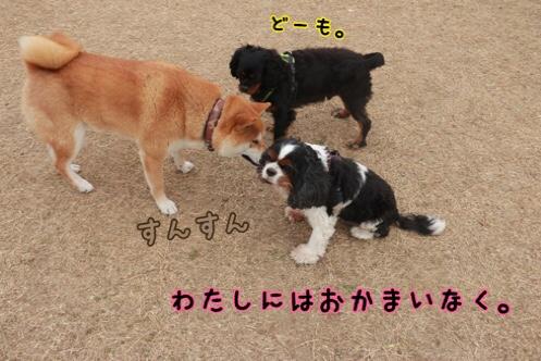 fc2blog_20190110181206c91.jpg