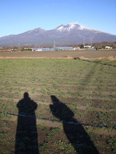 20081125-3.jpg