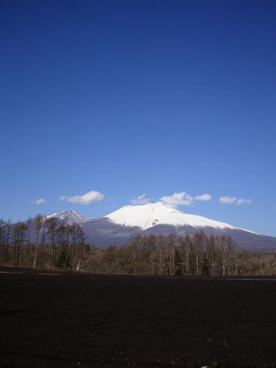 20081130-1.jpg