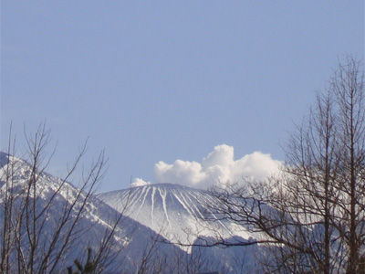 20090330-1.jpg