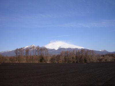 20090330-4.jpg