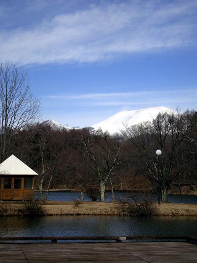 20090330-5.jpg