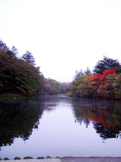 20091013-0.jpg