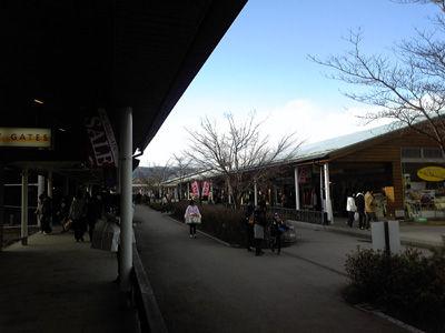 20100321-2.jpg