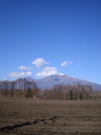 20101127-1.jpg