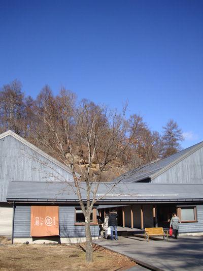 20101230-2.jpg