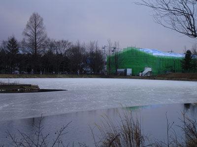 20111225-5.jpg