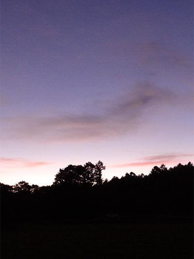 20130916-3g.jpg