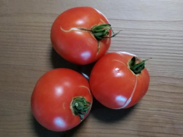 トマト0924