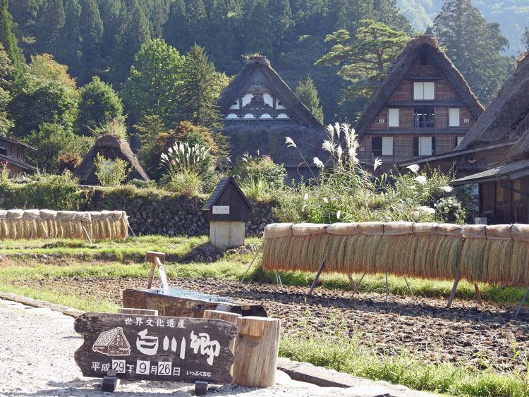 秋の旅行は、歴史・文化・食・風情ある合掌造りなどが楽しめる飛騨白川郷へ1