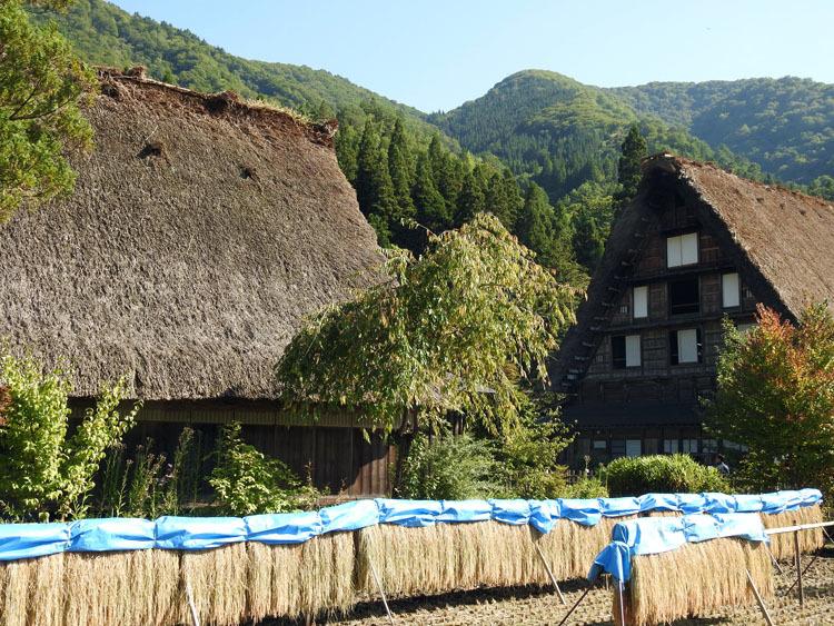 秋の旅行は、歴史・文化・食・風情ある合掌造りなどが楽しめる飛騨白川郷へ3