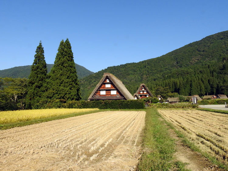 秋の旅行は、歴史・文化・食・風情ある合掌造りなどが楽しめる飛騨白川郷へ11