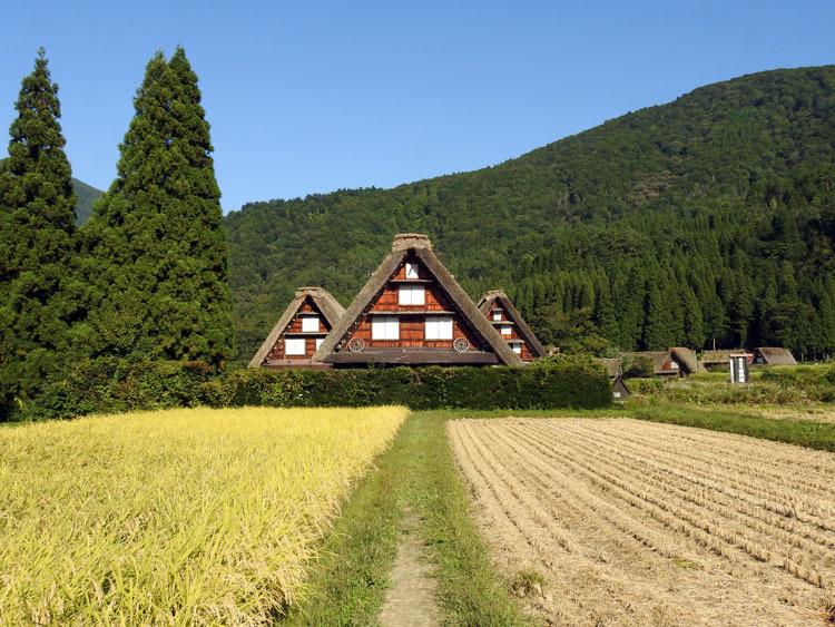 秋の旅行は、歴史・文化・食・風情ある合掌造りなどが楽しめる飛騨白川郷へ12