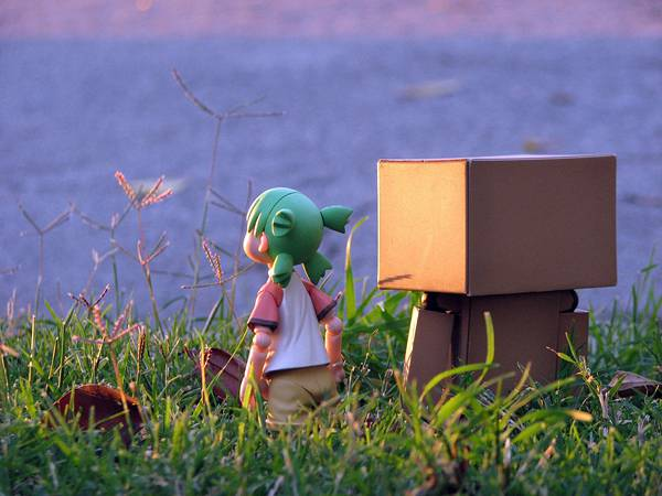 wallpaper-danboard-photo-12.jpg