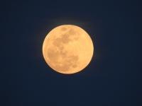 DSCN6816春満月・十五夜 (640x480)