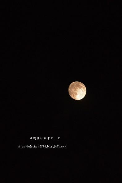 お月さま8月5日