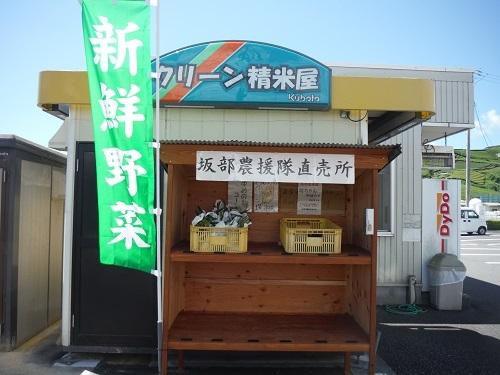 nouenntyokubai-500-1.jpg