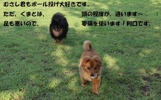 0A1A3310-987654567-987.jpg