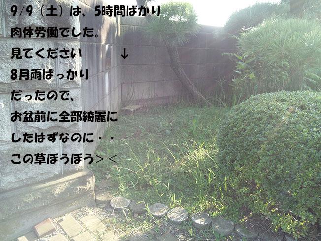 170909_160258-9876545678-987654.jpg
