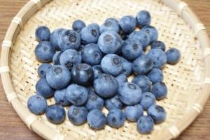 170722ブルーベリー初収穫
