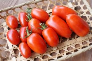 170727地中海トマト3種第1花房の実