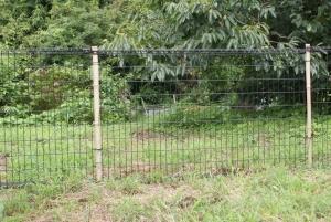 170814また柵が増えました
