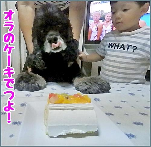 オラのケーキでつよ