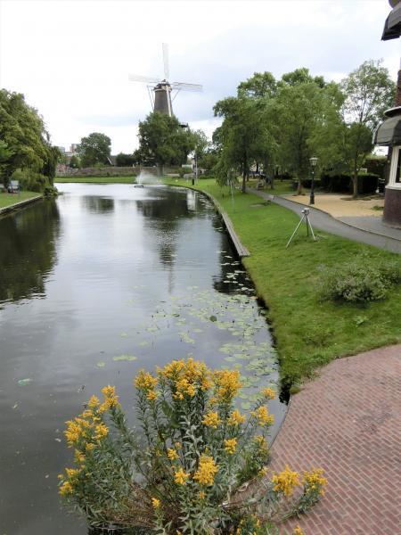 2017夏休み オランダ1