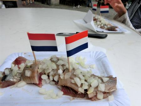 2017夏休み オランダ8