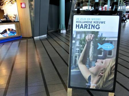 ハーリング(アムステルダム スキポール空港)1