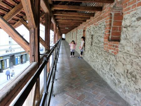 クラクフの城壁2