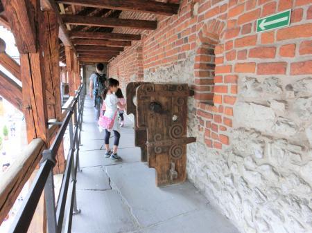 クラクフの城壁3