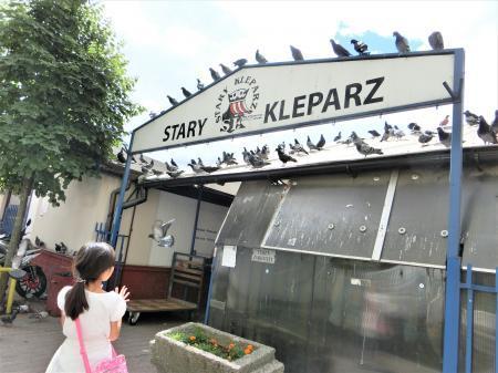クラクフのマーケット(屋外市場)stary kleparz8