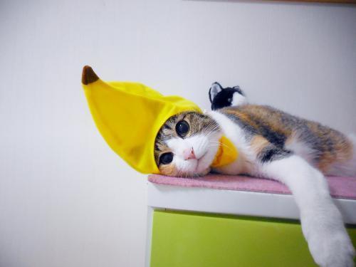 みくバナナクリクリ