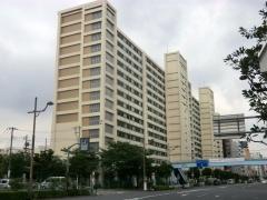 洲崎自動車営業所プール跡