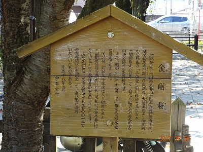 utsunomiya_008.jpg